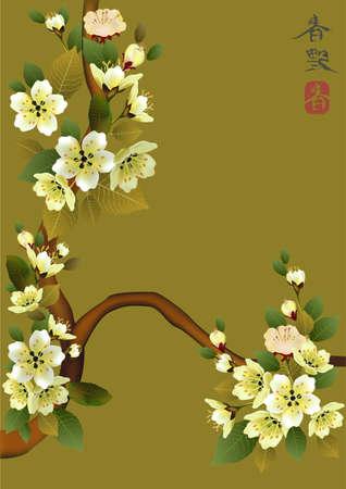 traditionally chinese: sakura   postcard   menu
