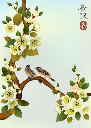 sakura bird  postcard   menu  Illustration