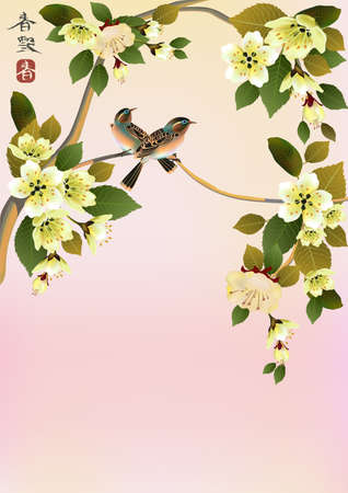 sakura bird  postcard   menu  Vector
