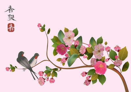 traditionally chinese:  sakura bird  postcard   menu  Illustration