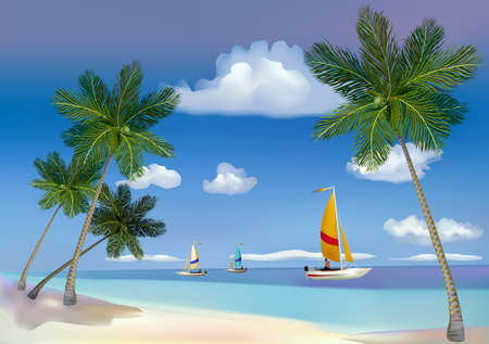 The sea, yachts, palm trees  Vector