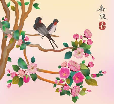 sakuras: Aves Sakura postal men�