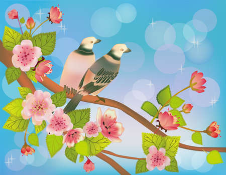 sakura ,bird , spring , postcard