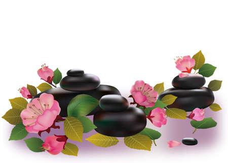 Spa stones and sakura flowers Stock Vector - 16326487
