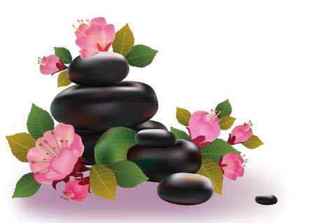 Spa stones and sakura flowers    Illustration