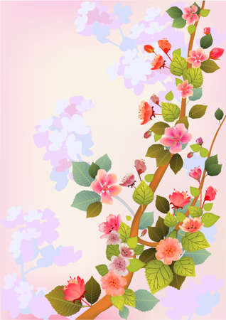 sakura   postcard   menu