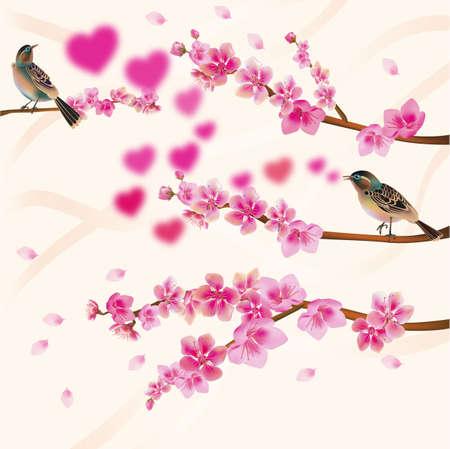 beck: love birds sakura spring Valentine s Day  Stock Photo