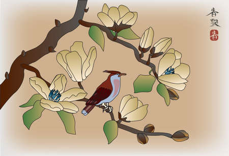 Blooming magnolia in spring, a bird sitting on a branch Stock Vector - 18345670