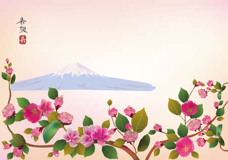 Fuji  Cherry blossoms, spring has come   Illustration