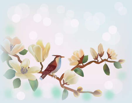 Blooming magnolia in spring, a bird sitting on a branch