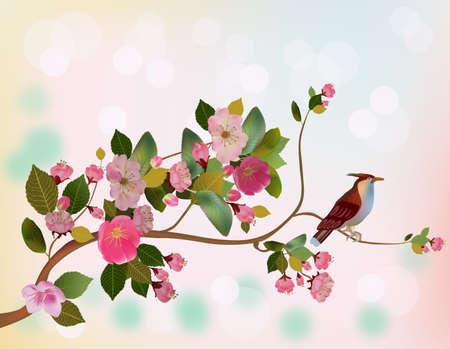 oriental season: sakura ,bird , spring , postcard