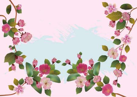 sakura , spring , postcard    Vector
