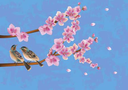 beck:  love birds, sakura, spring, Valentine s Day  Illustration