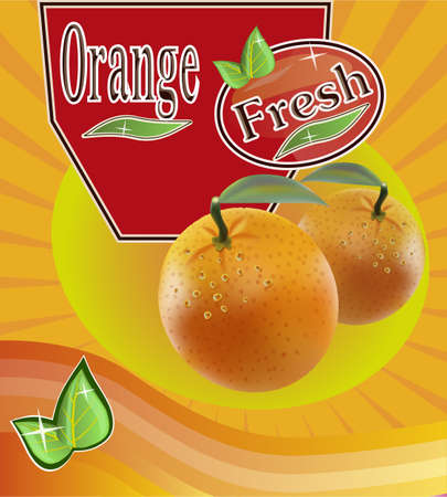 Fresh orange juice Banner Vector