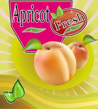 fruited: Fresh apricot juice Banner