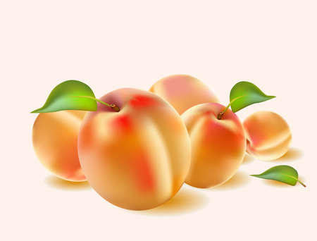 Fresh apricot juice Banner
