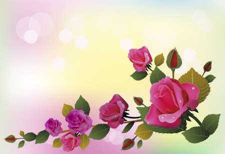 flowers , postcard . valentine\ Illustration