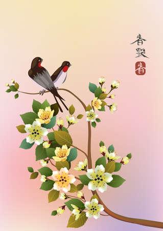 sakura .Evening in the garden blooming cherry and birds Vector