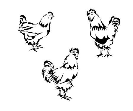 silhouette of a chicken and a rooster. Tattoo Illustration