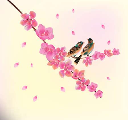 birds on branch: Sakura.Evening in the garden blooming cherry