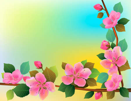 Nature background with blossom branch of pink sakura flowers.