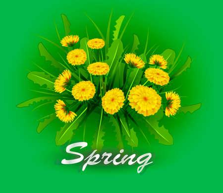 Vector illustration Springtime on background with spring flowers. Dandelions.