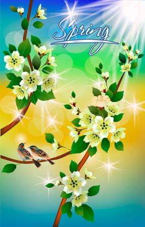 A Vector illustration spring flowers sakura blossom. Vettoriali