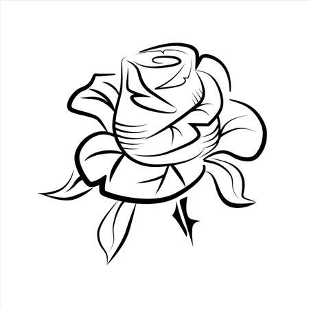 Vector drawing of a rose tattoo.