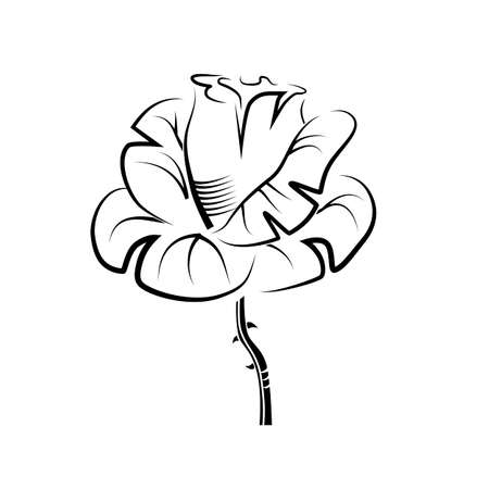 Vector drawing of a rose tattoo, logo.