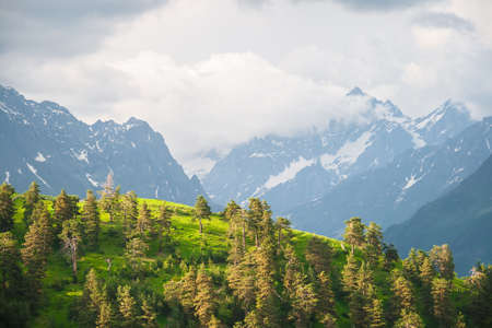 pinnacle: Caucasus mountain at sunset and a forest on a hill with massive pinnacle wall in the background Stock Photo