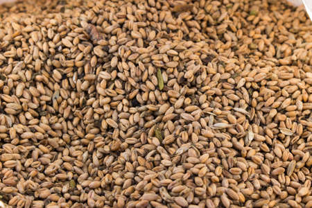 processed grains: Processed organic wheat grains in as agricultural background. Stock Photo