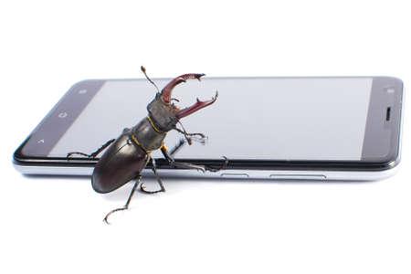 big screen: Beetle deer male on mobile modern phone. White background Stock Photo