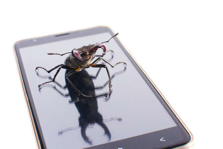 Beetle deer male on mobile modern phone. White background. Isolated