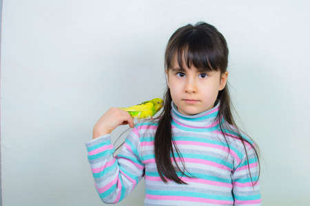 Cool budgie. A cute yellow budgerigar is sitting on the shoulder of a girl with long hair. Banque d'images