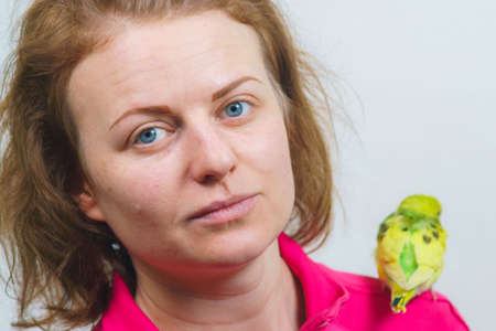 Funny budgie. A cute yellow budgie parrot is sitting on the girl s shoulder.