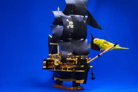 Wooden model of a handmade pirate warship on which a parrot sits. As a souvenir