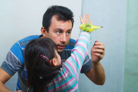 father and daughter communicate with their tame yellow parrot. Tamed Pet