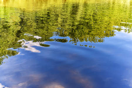 Wavy water surface of the river with reflection of coastal vegetation close up