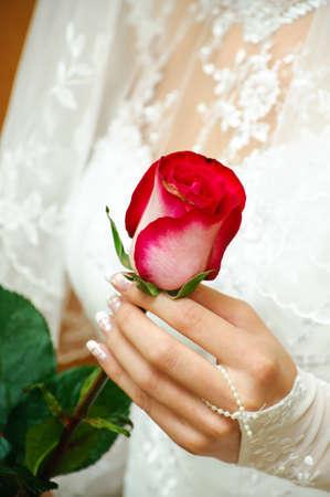 花嫁が手で繊細なバラを保持します。