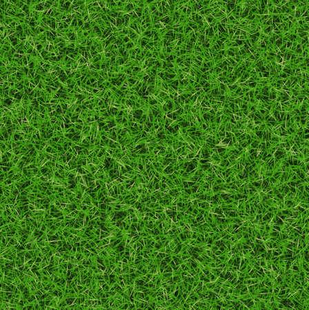 lush green grass texture  wallpapers pattern