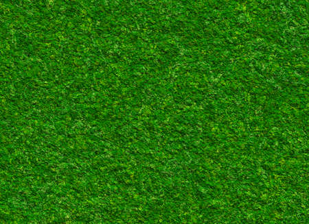 lush green grass texture on a rock backgrounds Stock Photo
