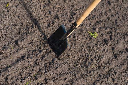 toil: toil work of ground  spade insert soil Stock Photo