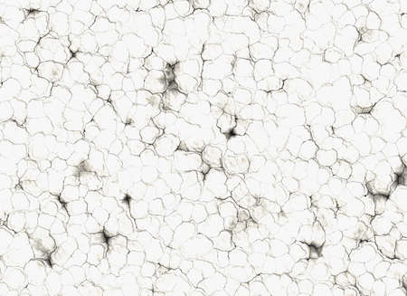 white dry cracked ground surface texture backgrounds Stock Photo