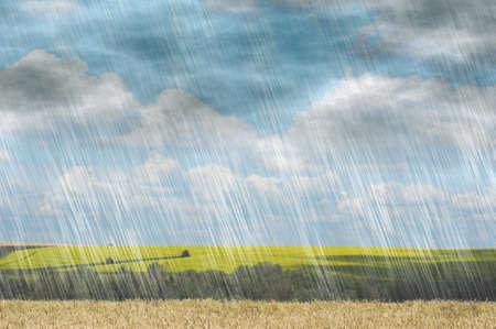 自然の風景の背景の曇りの天候で雨嵐