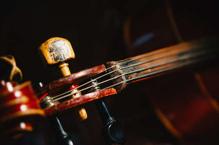 fretboard: fretboard of old shabby cello on a black backgrounds.  Stock Photo