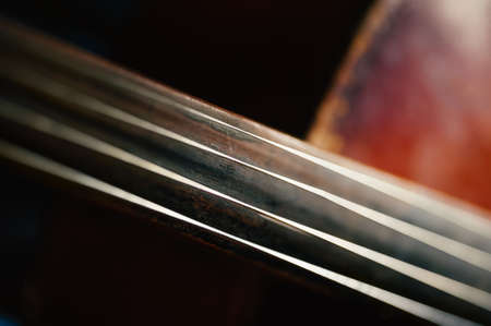 fretboard: fretboard with string of old shabby cello.
