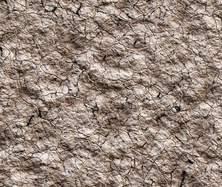 waterless: dry cracked wilderness texture Stock Photo