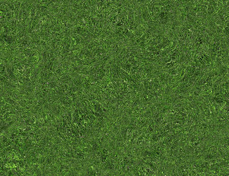curled: bright curled twisted green grass texture backgrounds