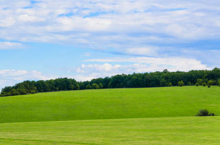 knoll: beauty green summer rural landscape view on blue sky backgrounds