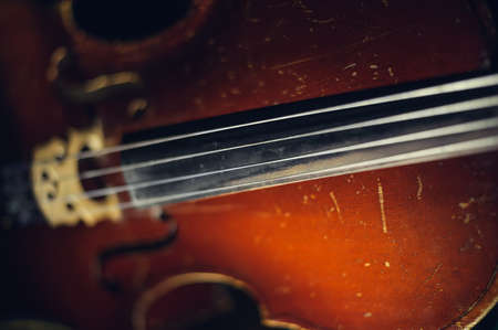 musical instrument parts: string of old shabby cello. selective focus technique